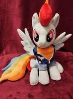 Captain Dash Rainbow Dash