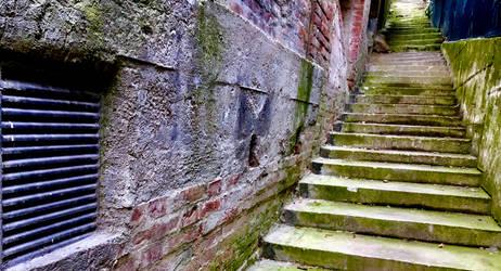 Steps by DoggedWolf