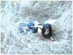 fallen fairy