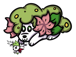 Land-Shaymin: Shaylet gets a toy