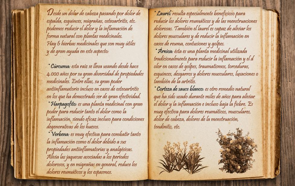 Learn with me [Kallistrate] Libro_by_dymanga-dbpcpnj