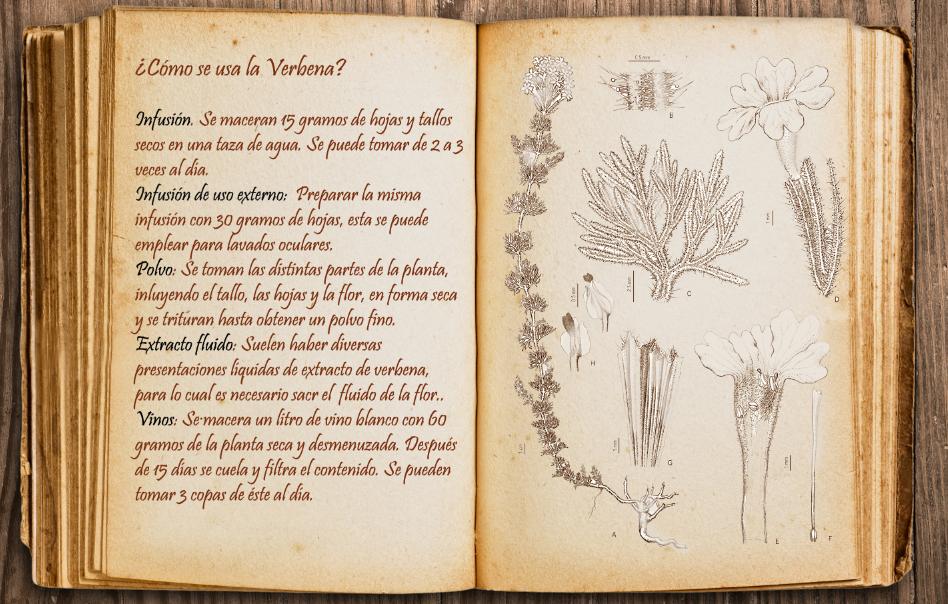 Learn with me [Kallistrate] Libro_2_by_dymanga-dbq0o5w