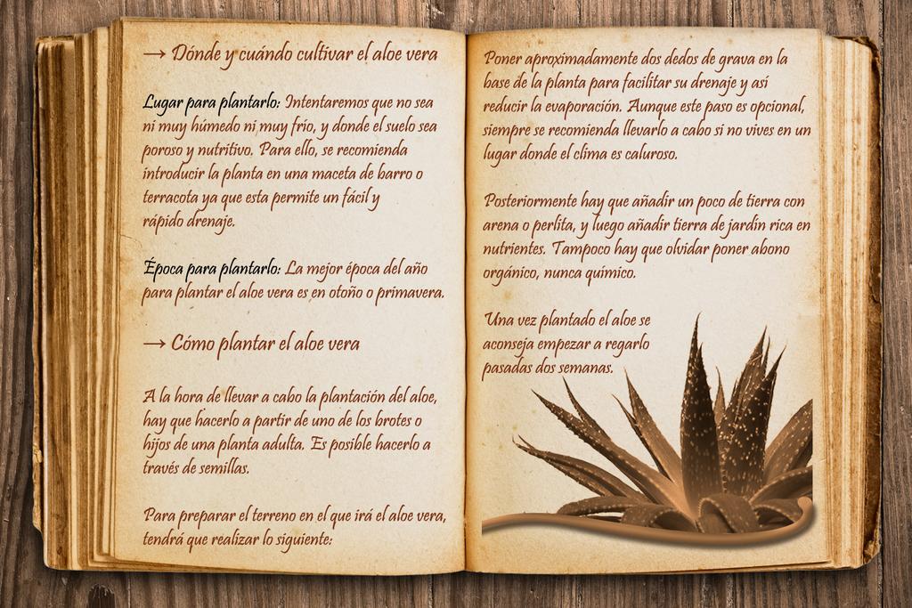 El bien mas preciado es el archivo limpio [Autoconclusivo] Libro_4_by_dymanga-dby3yh0