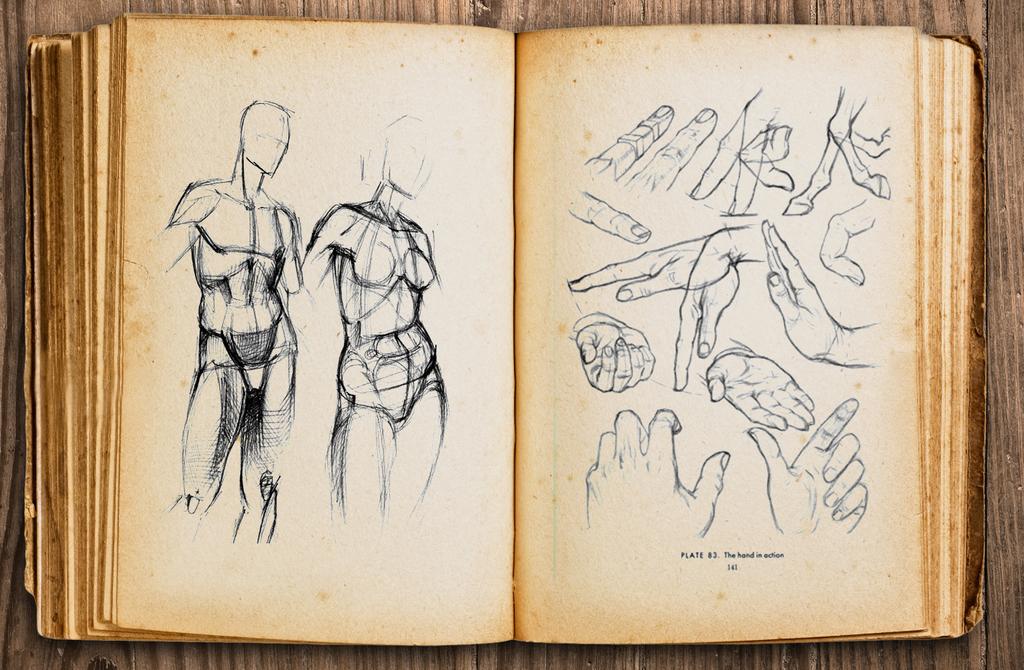 El bien mas preciado es el archivo limpio [Autoconclusivo] Dibujos_estudios_by_dymanga-dc7vp3g