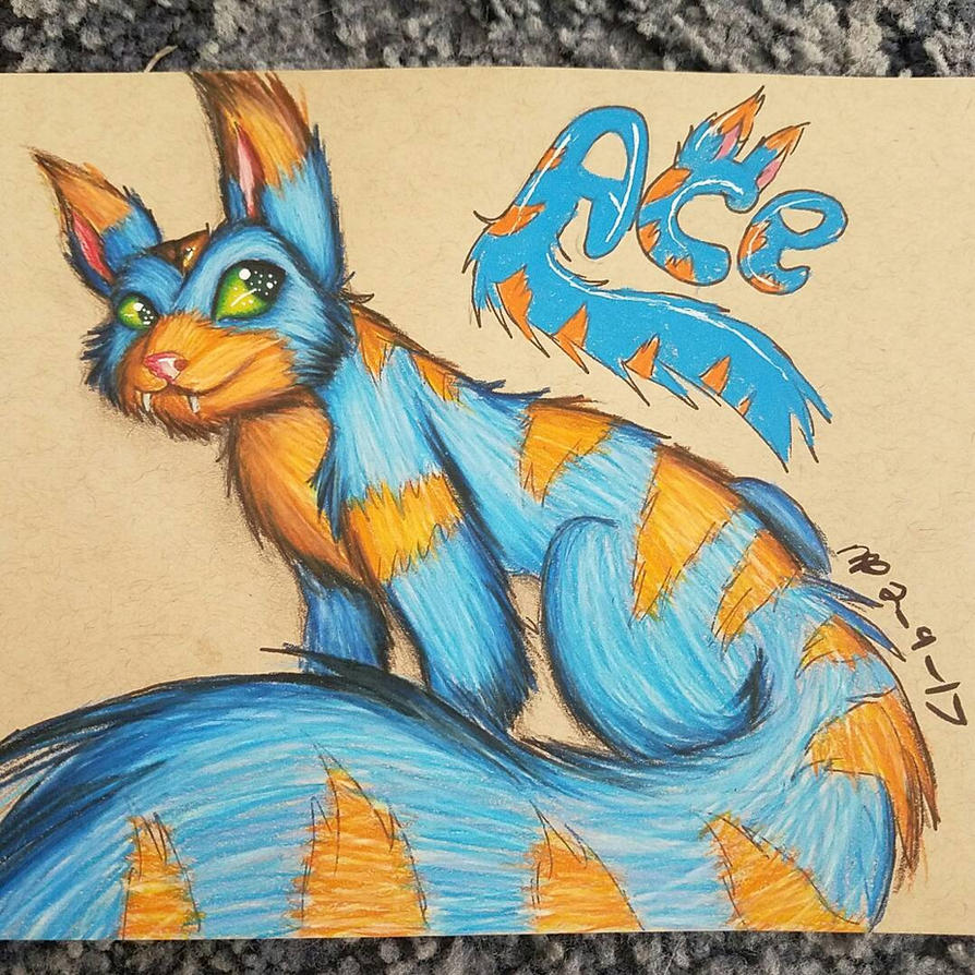 Ace the Sqautol by AzziranArts