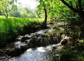 A Brook by callmenotwo