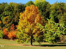 golden October by callmenotwo