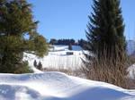Oberstaufen Weissach