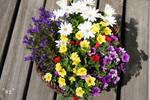 ein Korb Blumen by callmenotwo