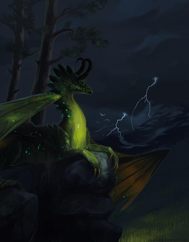 http://img05.deviantart.net/fe2c/i/2015/004/3/6/dragona_by_allagar-d8ckir0.jpg