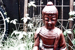 Backyard Buddha by scripturemonkey
