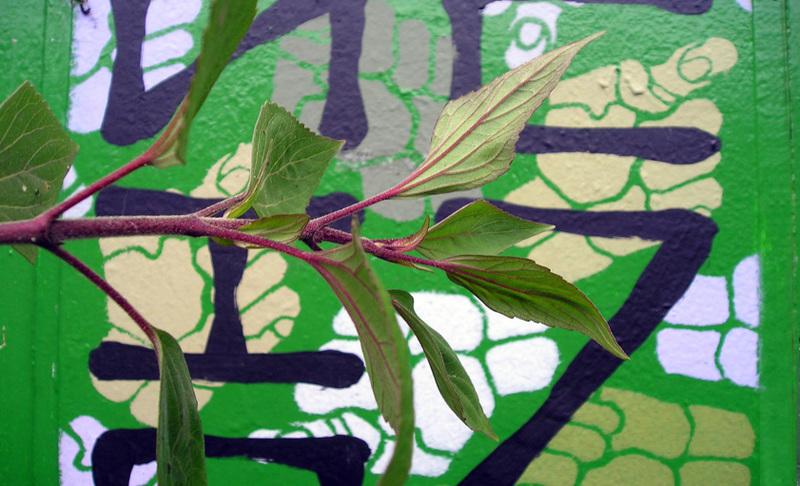 Branch by scripturemonkey