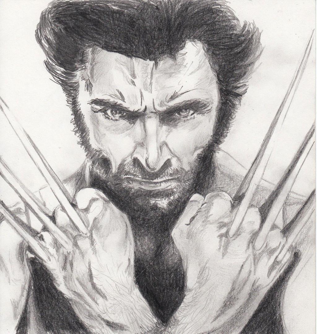Wolverine By SilviaDiMauro On DeviantArt