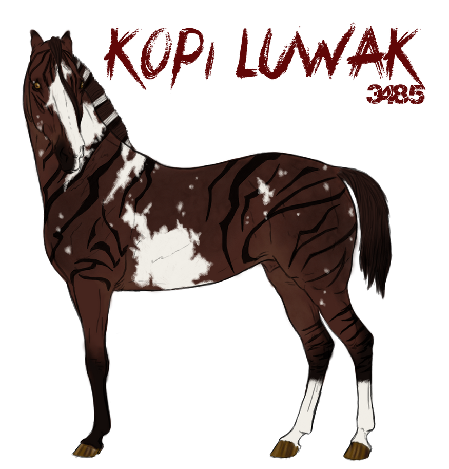 Kopi Luwak 3485 by SquirrelyTodd