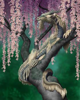 Chinese Dragon2