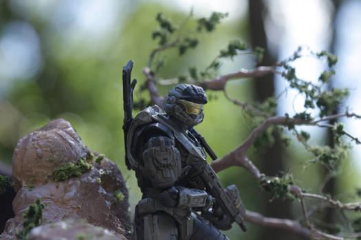Custom Halo Reach Stand 03
