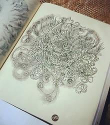 Peacock by Fluorescentteddy