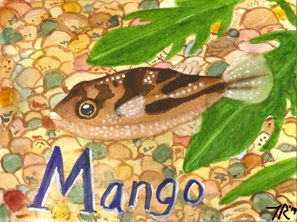Mango by luckycyberbunny