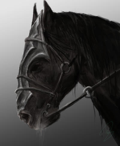Nazgul Horse Images - Reverse Search