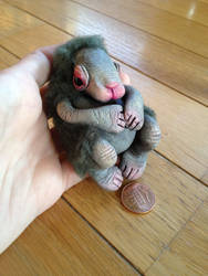 Baby Walter - FOR SALE