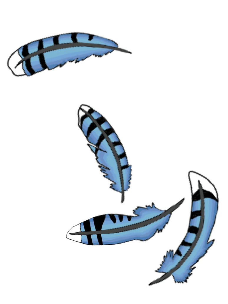 blue jay feathers draw by revaljester on deviantart rh revaljester deviantart com