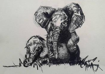 Baby Elephants Charcoal