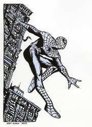 Spider-Man ... 85 bucks by Raffaele-Ienco