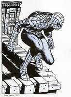 Spider-Man Commision02... 85 dollars by Raffaele-Ienco