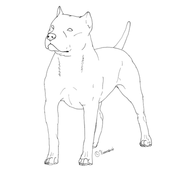 Pitbull LINE 1 by Kuurasusi