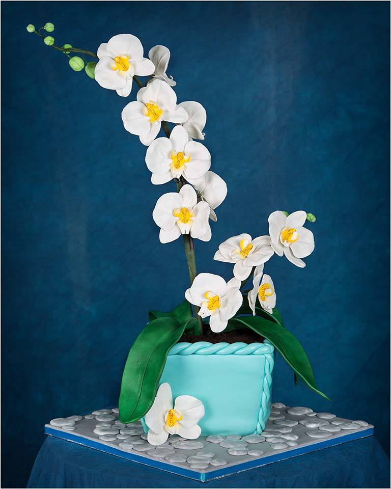 50th Birthday Cake by lenslady