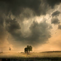Dust Storm by soulofautumn87