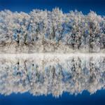 Winter Beauty by soulofautumn87