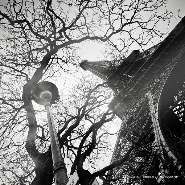 Tower, Tree and a Lamp by soulofautumn87
