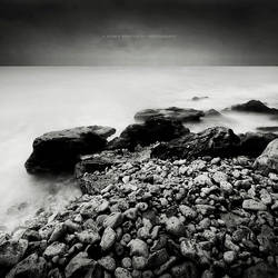 Coastal Prune by soulofautumn87