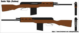 2088 - Rodinan Battle Rifle Concept