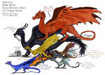Dragon Breeds Size Refrence