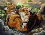 Fauna Focus Dhole Pair