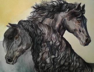 Hylka and Jonahs by Shadowind