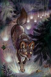 Path Illuminate by Shadowind