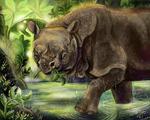 Javan Rhino (Fauna focus March) by Shadowind