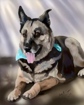 Lucy Pet Portrait Digital Painting