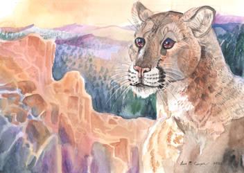 Mountain Lion Magic