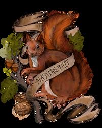 Squirrel Nature Nut