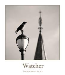 Watcher by Guardingdark