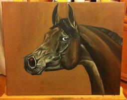 Arabian Horse in oil