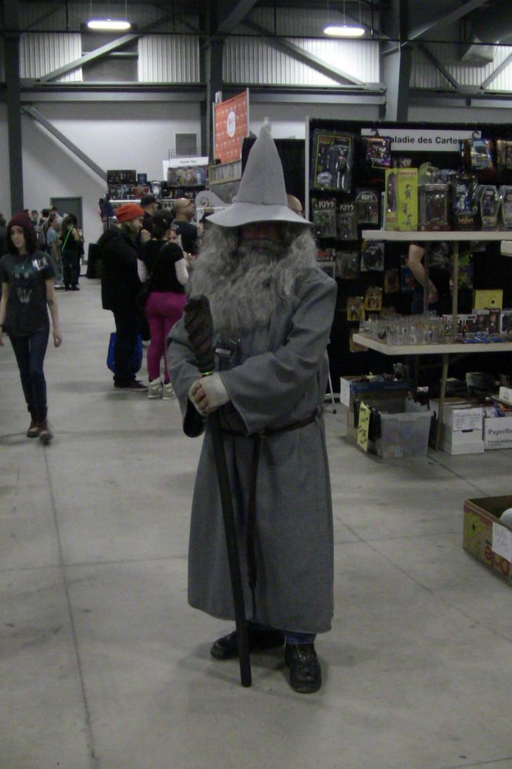 Gandalf the Grey by unownace