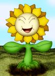 Beta Sunflora (For xmattox)