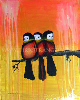 PERCHED SUNSET COTINGA TRIO