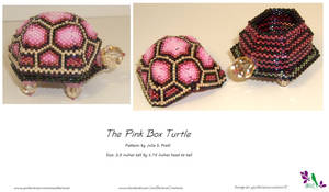 Pink Box Turtle - SOLD