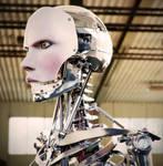 Robot Endoskeleton 1
